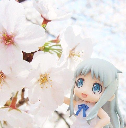 你是在看樱花嘛?