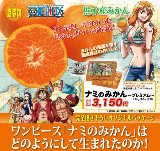 娜美甜橘熊本出产《海贼王》专属橘子开卖